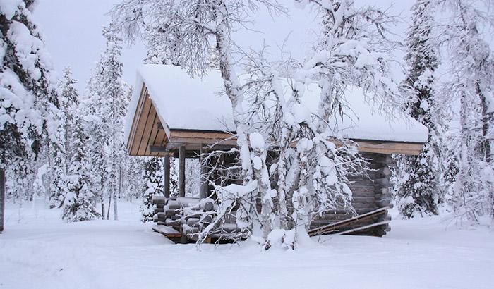 Десет причини да посетите Лапландия през зимата